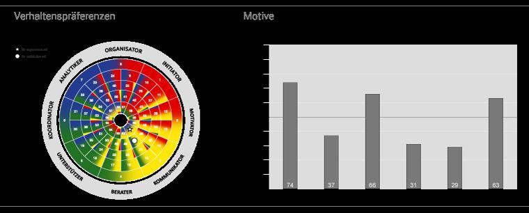 Grafik Verhaltenspräferenzen und Motive